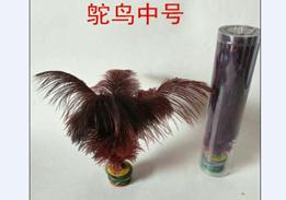 鸵鸟中号2